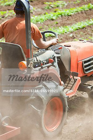 Farmer using tractor Stock Photo - Premium Royalty-Free, Image code: 6114-06599921