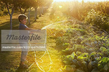 Boy Watering Garden, Croatia, Slavonia, Europe Stock Photo - Premium Royalty-Free, Image code: 6115-06732946