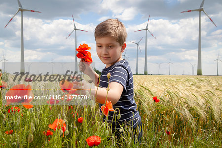 Boy On Field Plucking Poppy Flowers, Dessau, Germany, Europe Stock Photo - Premium Royalty-Free, Image code: 6115-06778704