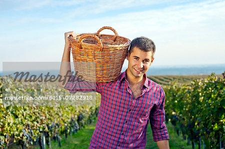 Grape harvest, young man carrying basket with grapes, Slavonia, Croatia Stock Photo - Premium Royalty-Free, Image code: 6115-07282918