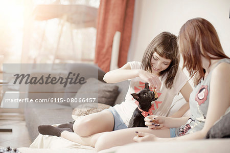 Two young women playing with pet dog Stock Photo - Premium Royalty-Free, Image code: 6115-08066457