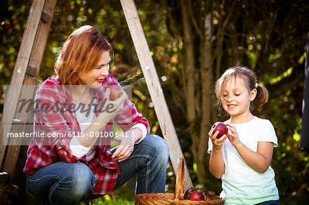 Grandmother and granddaughter picking apples, Munich, Bavaria, Germany Stock Photo - Premium Royalty-Free, Image code: 6115-08100641
