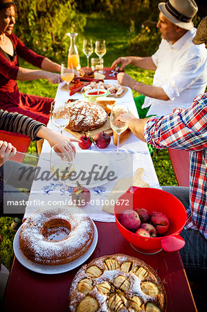 Family having a picnic in the garden, Munich, Bavaria, Germany Stock Photo - Premium Royalty-Free, Image code: 6115-08100672