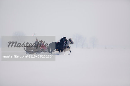 Horse-drawn carriage in the snow, Baranja, Croatia Stock Photo - Premium Royalty-Free, Image code: 6115-08101334