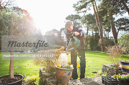 Senior man watering flowers in garden, Bournemouth, County Dorset, UK, Europe Stock Photo - Premium Royalty-Free, Image code: 6115-08105143