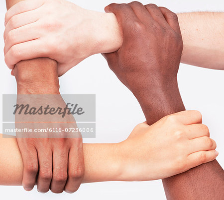 Four young people holding each others wrists in a circle, close-up, studio shot Stock Photo - Premium Royalty-Free, Image code: 6116-07236006