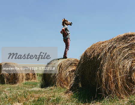A Man Wearing A Horse Mask, Standing On A Hay Bale, Looking Out Over The Landscape. Stock Photo - Premium Royalty-Free, Image code: 6118-07122118