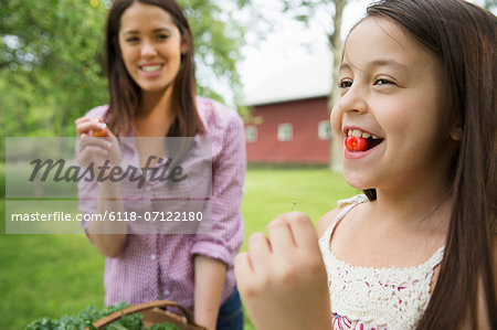 Family Party. A Child With A Fresh Cherry Between Her Teeth. A Young Woman Watching Her And Laughing. Stock Photo - Premium Royalty-Free, Image code: 6118-07122180