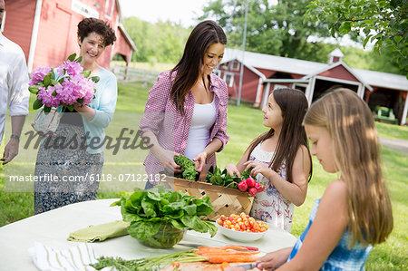 Family Party. Five People, Parents And Children Around A Table Preparing A Meal Of Fresh Picked Salads, Fruits And Vegetables Together. Stock Photo - Premium Royalty-Free, Image code: 6118-07122182