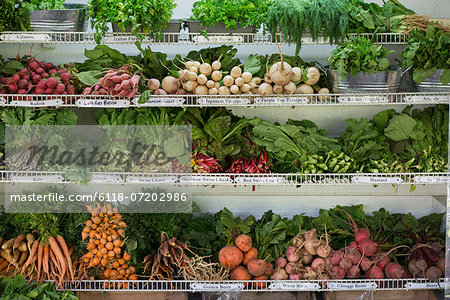A farm stand with rows of freshly picked vegetables for sale. Stock Photo - Premium Royalty-Free, Image code: 6118-07202986