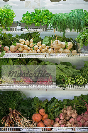 A farm stand with rows of freshly picked vegetables for sale. Stock Photo - Premium Royalty-Free, Image code: 6118-07202987