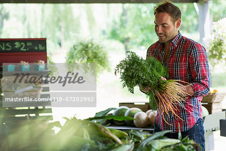 A farm stand with fresh organic vegetables and fruit. A man holding bunches of carrots. Stock Photo - Premium Royalty-Free, Image code: 6118-07202992
