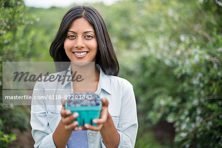 Organic Farming. A woman holding a punnet of fresh picked organic blueberries, Cyanococcus. Stock Photo - Premium Royalty-Free, Image code: 6118-07203042