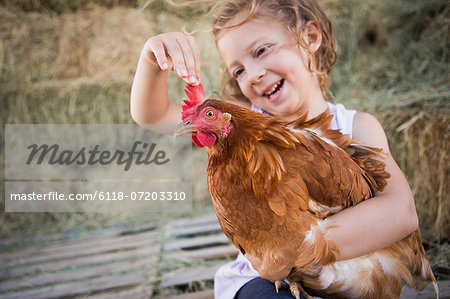 A young girl holding a chicken in a henhouse. Stock Photo - Premium Royalty-Free, Image code: 6118-07203310