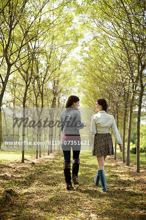 Two friends walking along a path through an avenue of trees. Stock Photo - Premium Royalty-Free, Image code: 6118-07351621