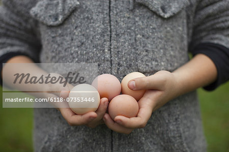A person holding a clutch of fresh organic hen's eggs. Stock Photo - Premium Royalty-Free, Image code: 6118-07353446