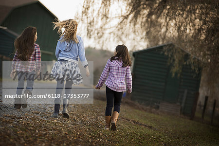Three children walking along a path on an organic farm. Stock Photo - Premium Royalty-Free, Image code: 6118-07353777