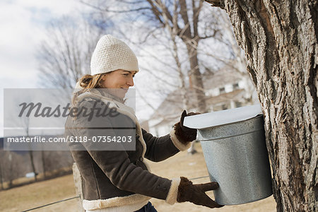 A maple syrup farm. A young woman holding a bucket which is tapping the sap from the tree. Stock Photo - Premium Royalty-Free, Image code: 6118-07354203