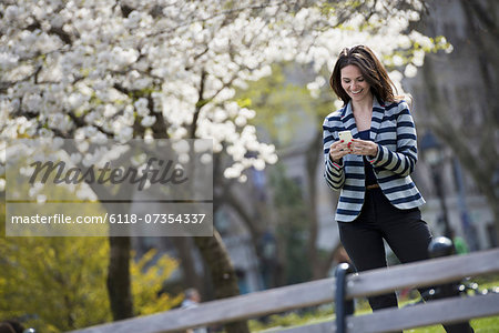 Outdoors in the city in spring time. New York City park. White blossom on the trees. A woman standing checking her mobile phone. Stock Photo - Premium Royalty-Free, Image code: 6118-07354337