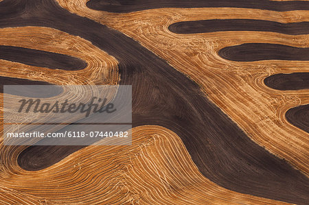 Farmland landscape, with ploughed fields and furrows in Palouse, Washington, USA. An aerial view with natural patterns. Stock Photo - Premium Royalty-Free, Image code: 6118-07440482