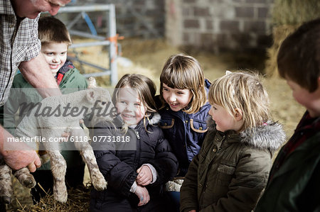Children and new-born lambs in a lambing shed. Stock Photo - Premium Royalty-Free, Image code: 6118-07731818