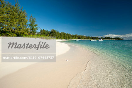 Denis Island, Seychelles, Indian Ocean, Africa Stock Photo - Premium Royalty-Free, Image code: 6119-07443737