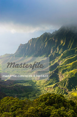 Kalalau lookout over the Napali coast from the Kokee State Park, Kauai, Hawaii, United States of America, Pacific Stock Photo - Premium Royalty-Free, Image code: 6119-07443823