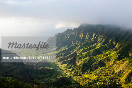 Kalalau lookout over the Napali coast from the Kokee State Park, Kauai, Hawaii, United States of America, Pacific Stock Photo - Premium Royalty-Free, Image code: 6119-07443824
