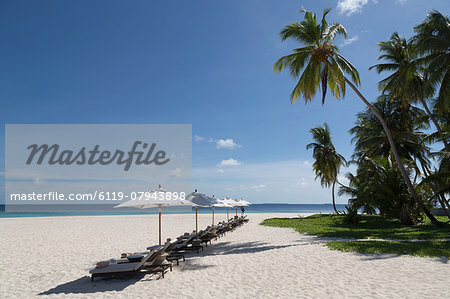 Sun loungers on the beach on an island in the Northern Huvadhu Atoll, Maldives, Indian Ocean, Asia Stock Photo - Premium Royalty-Free, Image code: 6119-07943898