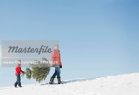 Father and son carrying spruce, Bavaria, Germany Stock Photo - Premium Royalty-Free, Image code: 6121-07740026