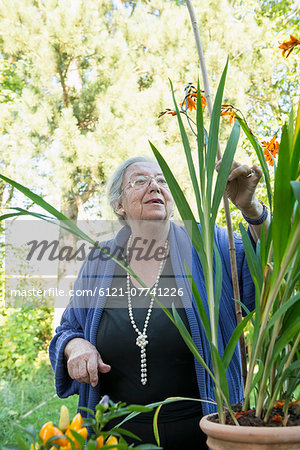 Female senior looking at her pot plant Stock Photo - Premium Royalty-Free, Image code: 6121-07741226