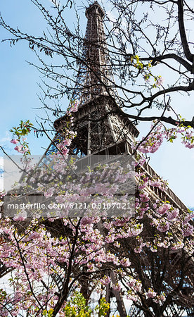 Low angle view of Eiffel Tower against sky, Paris, France Stock Photo - Premium Royalty-Free, Image code: 6121-08107021