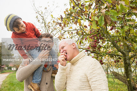 Son watching his father and grandfather eating  apple in an apple orchard, Bavaria, Germany Stock Photo - Premium Royalty-Free, Image code: 6121-08522247