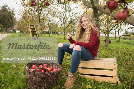 Teenage girl sitting on a crate under an apple tree in an apple orchard farm, Bavaria, Germany Stock Photo - Premium Royalty-Free, Image code: 6121-08522251