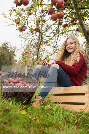 Teenage girl sitting on a crate under an apple tree in an apple orchard farm, Bavaria, Germany Stock Photo - Premium Royalty-Free, Image code: 6121-08522252