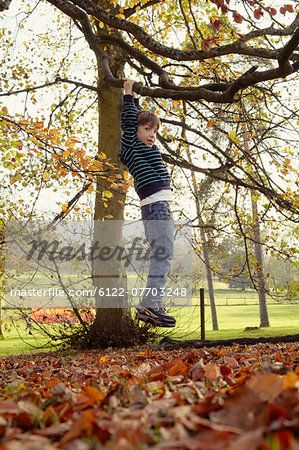 Boy playing on tree outdoors Stock Photo - Premium Royalty-Free, Image code: 6122-07703248