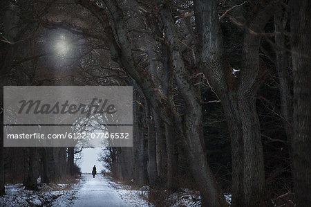 Woman riding horse on snowy path Stock Photo - Premium Royalty-Free, Image code: 6122-07706532