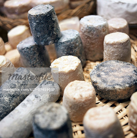 Display of Goat's Cheese in a shop Stock Photo - Premium Royalty-Free, Image code: 613-07459017
