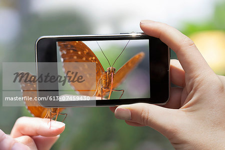 Woman photographing a butterfly wit a smart phone Stock Photo - Premium Royalty-Free, Image code: 613-07459430
