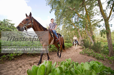 A couple rides horses on a wooded trail Stock Photo - Premium Royalty-Free, Image code: 613-07492846