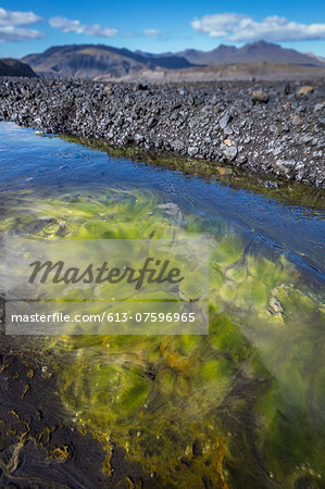 Algae in glacial river, Thorsmork, Iceland Stock Photo - Premium Royalty-Free, Image code: 613-07596965