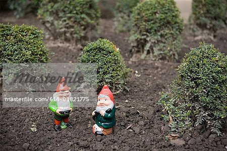 Two gnomes Stock Photo - Premium Royalty-Free, Image code: 614-01821775