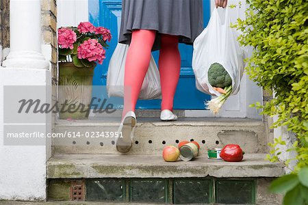 Shopping falling from a torn bag Stock Photo - Premium Royalty-Free, Image code: 614-02343951