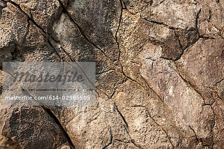 Close up image of cracked rocks Stock Photo - Premium Royalty-Free, Image code: 614-02985505