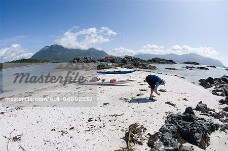 Woman looking for shells on beach, Esperanza Inlet, Vancouver Island, British Columbia, Canada Stock Photo - Premium Royalty-Free, Image code: 614-06002332