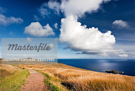 Easter island, polynesia Stock Photo - Premium Royalty-Free, Image code: 614-06002481