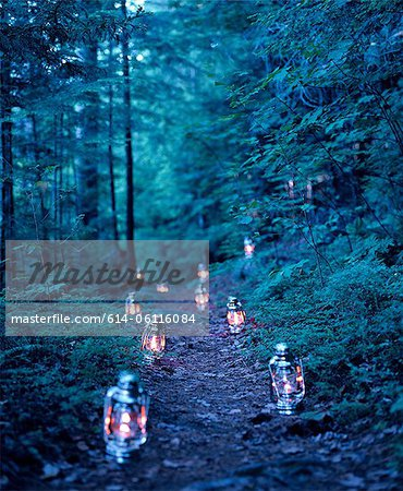 Lanterns marking a path through the woods Stock Photo - Premium Royalty-Free, Image code: 614-06116084