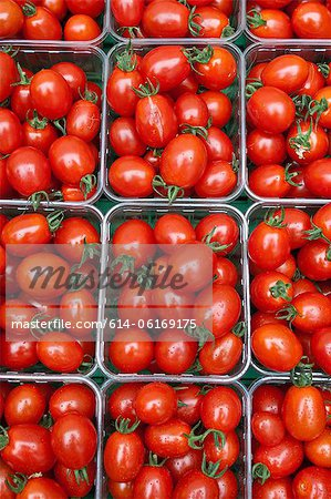 Small plum tomatoes in containers Stock Photo - Premium Royalty-Free, Image code: 614-06169175