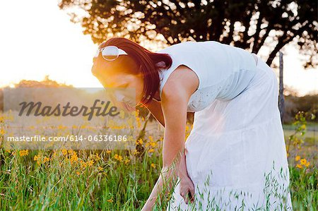 Woman picking flowers in field in sunlight Stock Photo - Premium Royalty-Free, Image code: 614-06336186