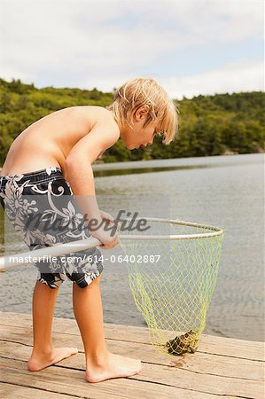 Boy looking at frog caught in net Stock Photo - Premium Royalty-Free, Image code: 614-06402887